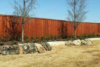 Wood Cedar Fences